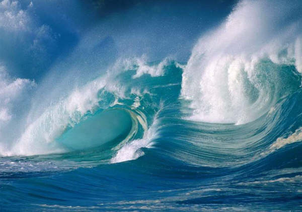 Awesome Ocean Wave